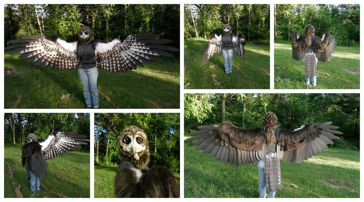 Client Wings! by buckskinmare