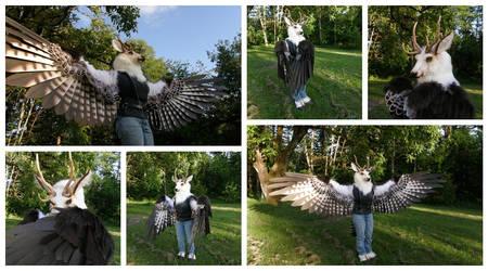 Client Wings, Part 2!