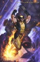 Wolverine! by TylerWalpole