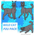 wild cats p2u base pack - $3.00 or 300 points!