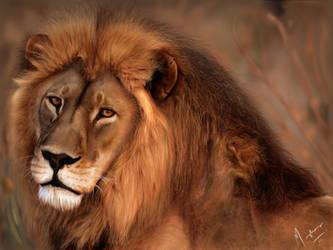 Lion King by mazhear