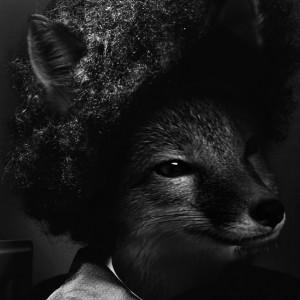 juicethehedgehog's Profile Picture