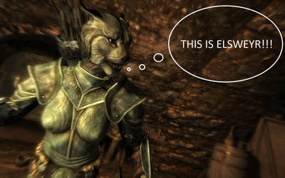 THIS IS ELSWEYR!!!
