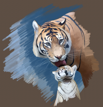 Tiger and Cub study by Gemneroth