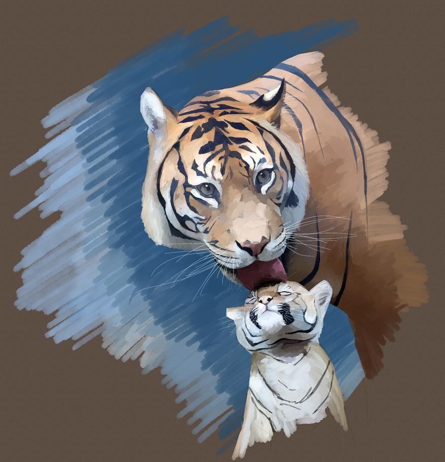 Tiger and Cub study