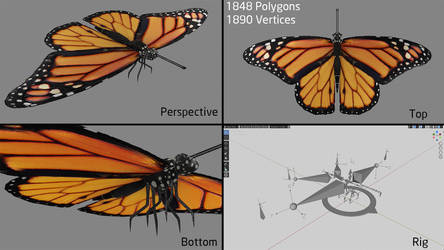 Monarch Butterfly | Rigged | Blender Eevee