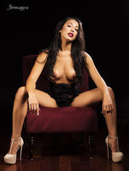 Lexi Burgundy Chair 3 by jlrimages