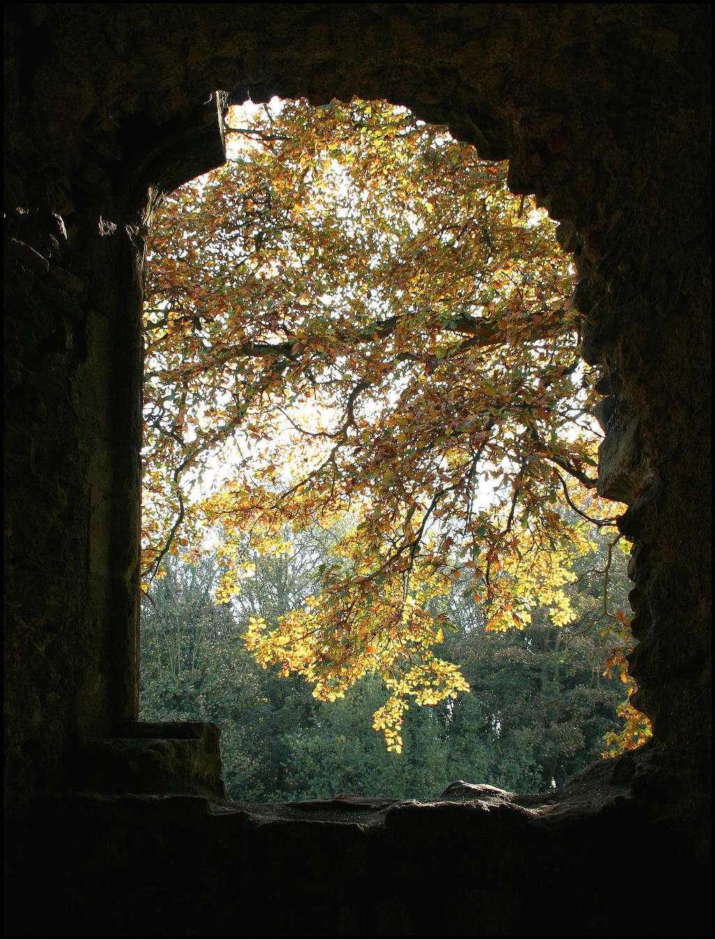 Stock - Netley Abbey Window by OghamMoon