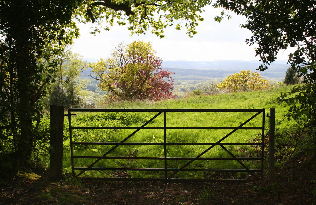 Blackdown Hill 2 - Stock by OghamMoon