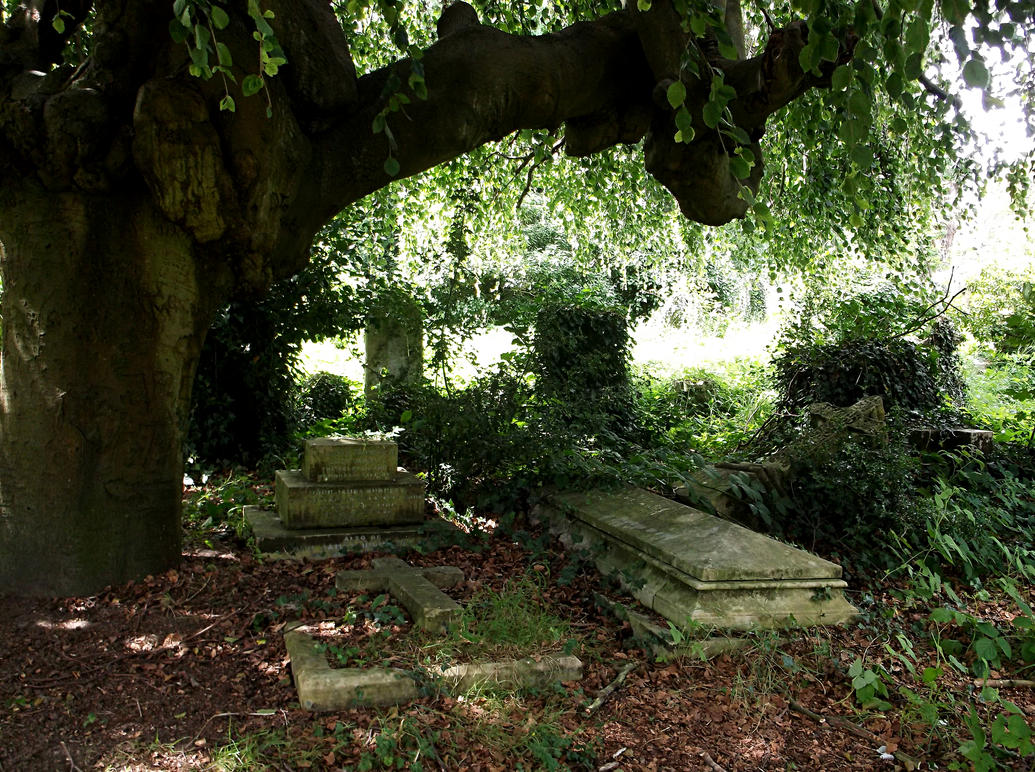 Southampton Old Cemetery 19 by OghamMoon