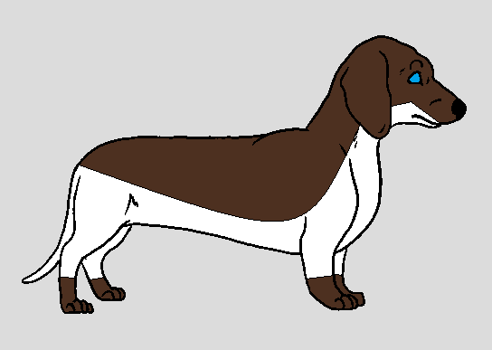 Dachshund adopt (OPEN) by FlameNelson