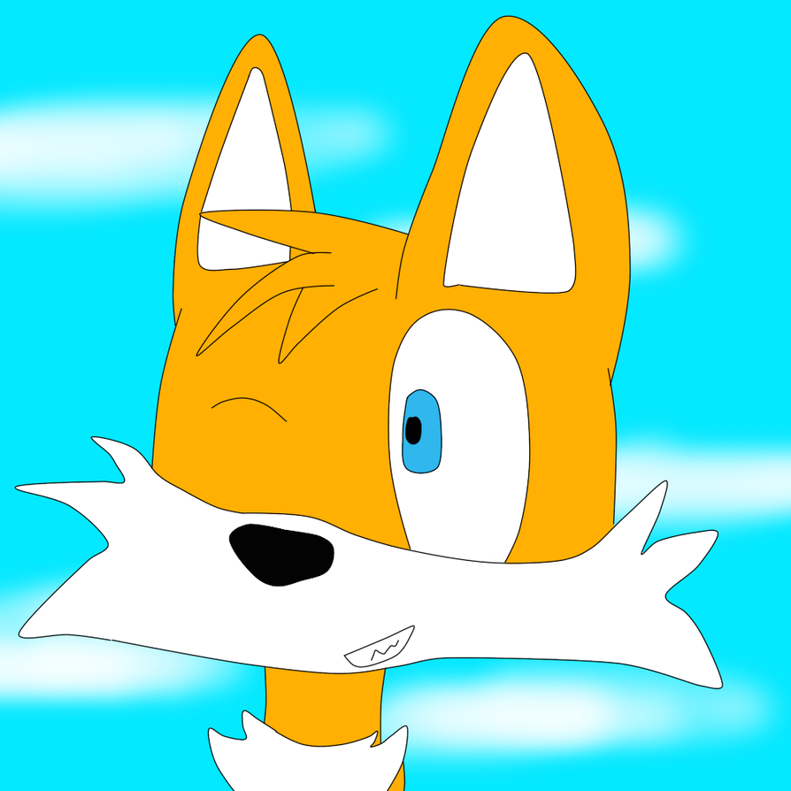 Tails by FlameNelson