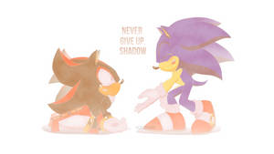 Never give up, Shadow