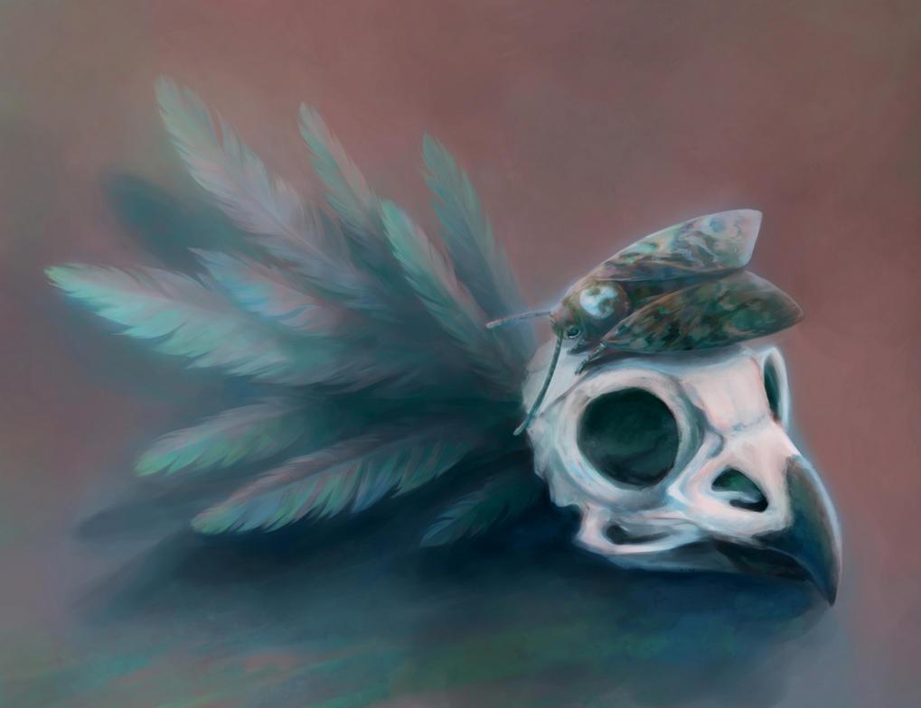 Acherontia atropos by Fiction69