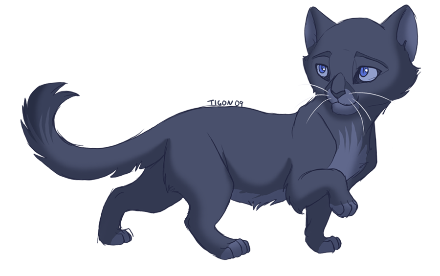 Bluekit by tigon