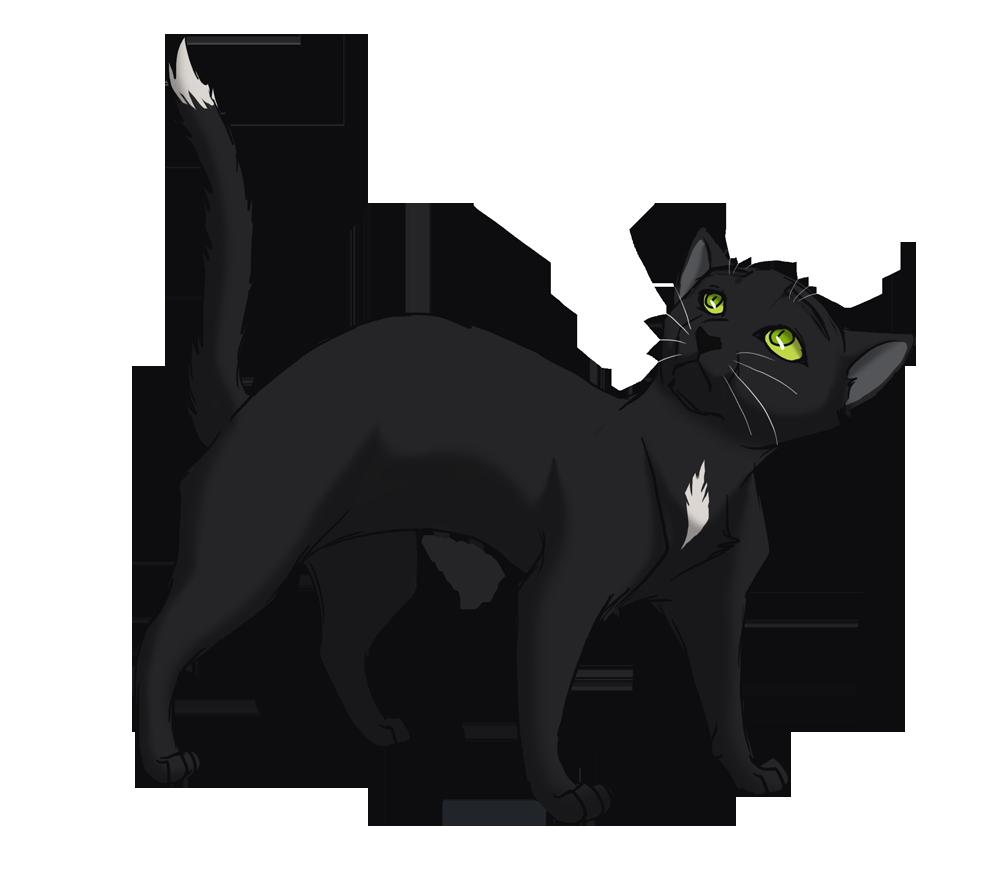 Warrior Cats Ravenpaw
