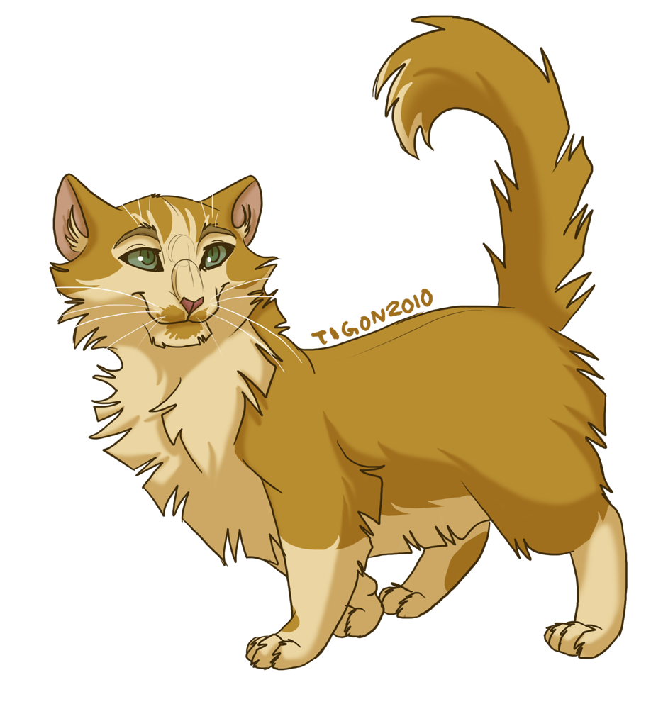Warrior Cats Mothwing And Willowshine Warrior Cats Mothwing ...