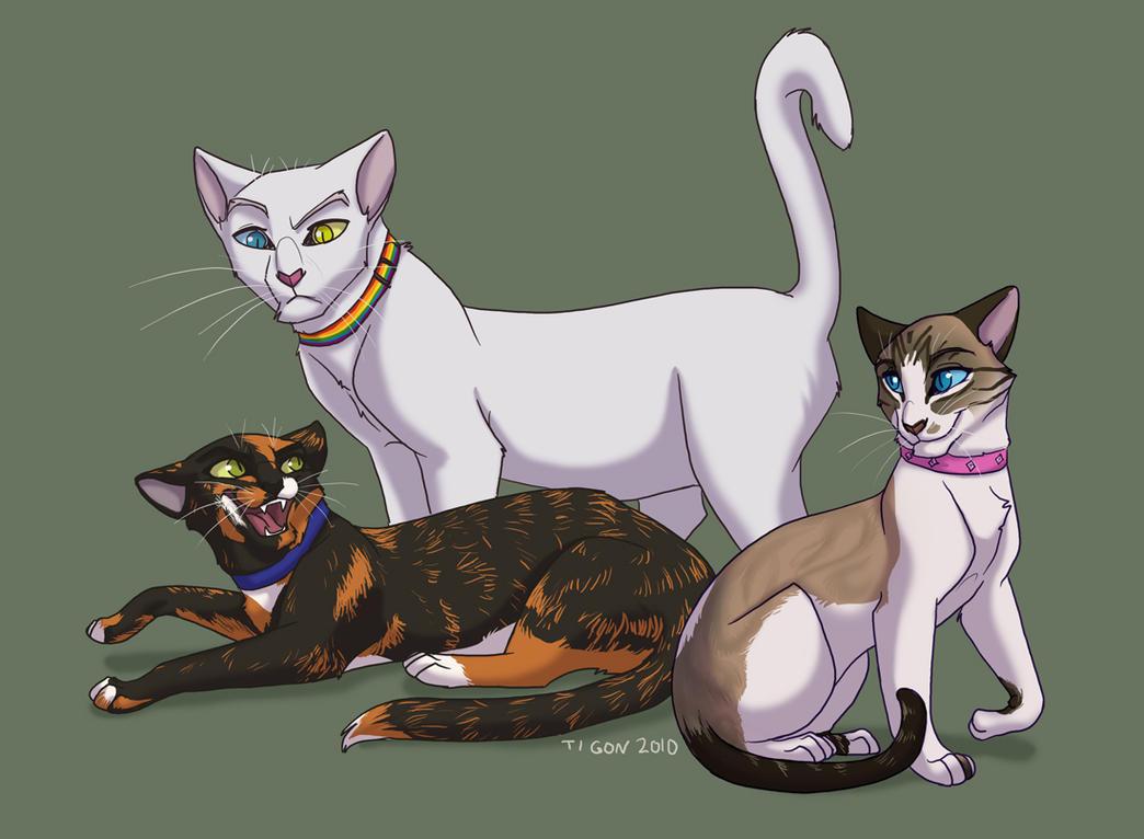 Cat Avatar Maker