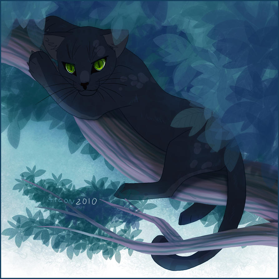 Panther Kitty by tigon on DeviantArt