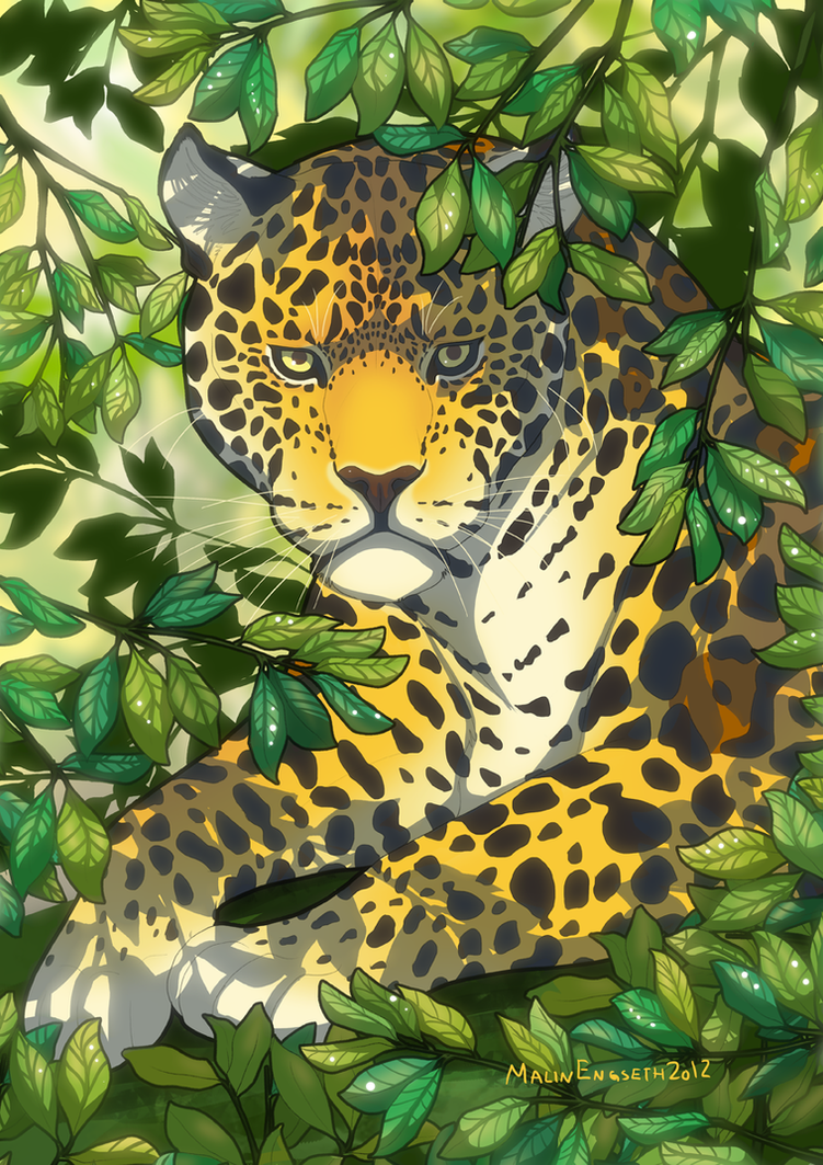 Jaguar by tigon