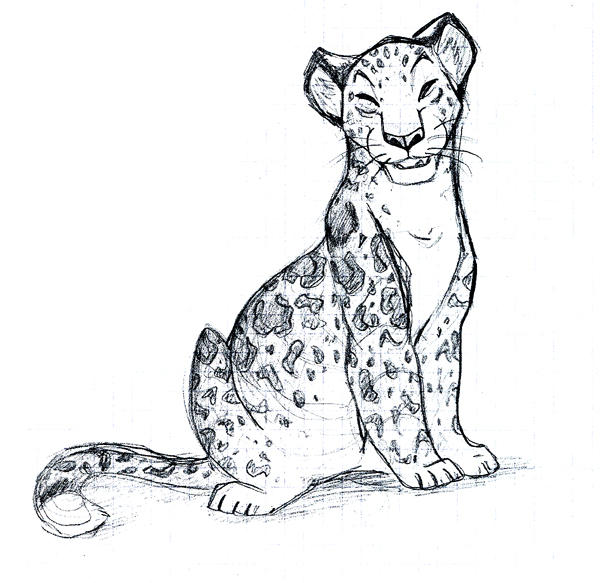 Leopard Sketch By Tigon On DeviantArt