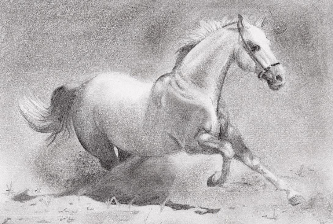 To acquire Drawings Pencil of horses running pictures trends