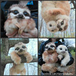 Baby Three-Toed Sloth - Handmade Poseable Creature