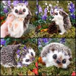 Lavendel the Springtime Hedgehog