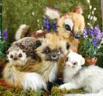 Forest Family~ Heidi Riker Poseable Creature Dolls