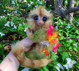 Fairy Marmoset - Poseable Fantasy Creature Doll by RikerCreatures