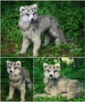 Fantasy Elven Wolf - Lifesize Poseable Creature