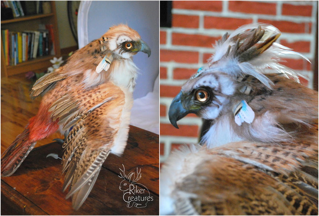 Cernunnos the Fantasy Red-Tailed Hawk WIP by RikerCreatures