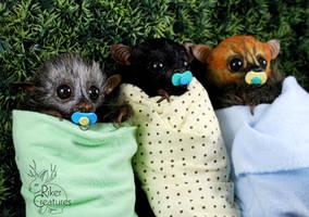 Baby Fruit Bats by RikerCreatures