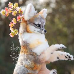 Kitsune by RikerCreatures