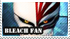 Bleach Fan by Laraen