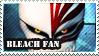 Bleach Fan by Laraen