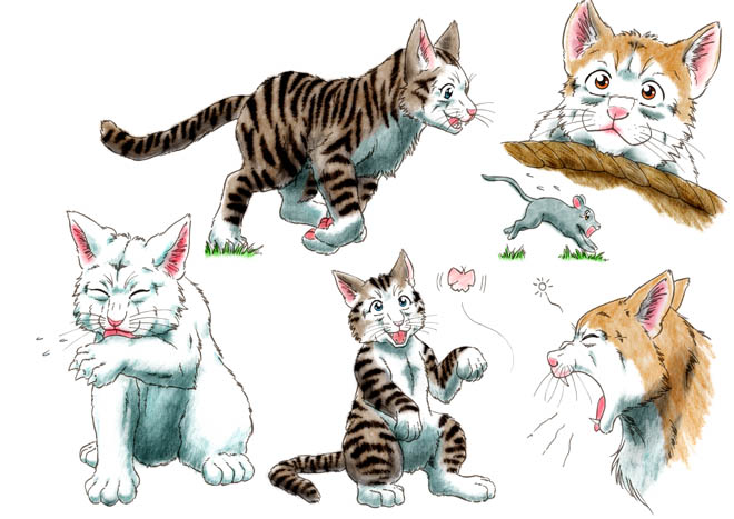With you asian cat sketches