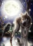 Wolf, Crow