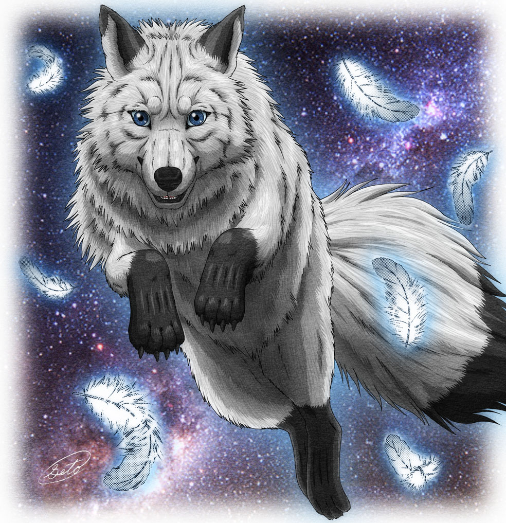Wolf Jump By SheltieWolf