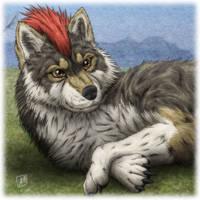 Wolf Male by SheltieWolf