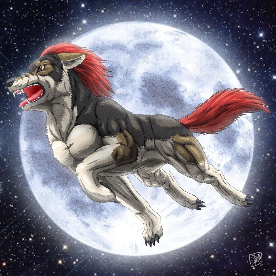 Moon : Male Wolf By Sheltiewolf
