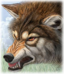 Angry Wolf by SheltieWolf