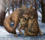 Coyote, Margay