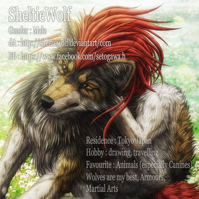 SheltieWolf's Profile Picture