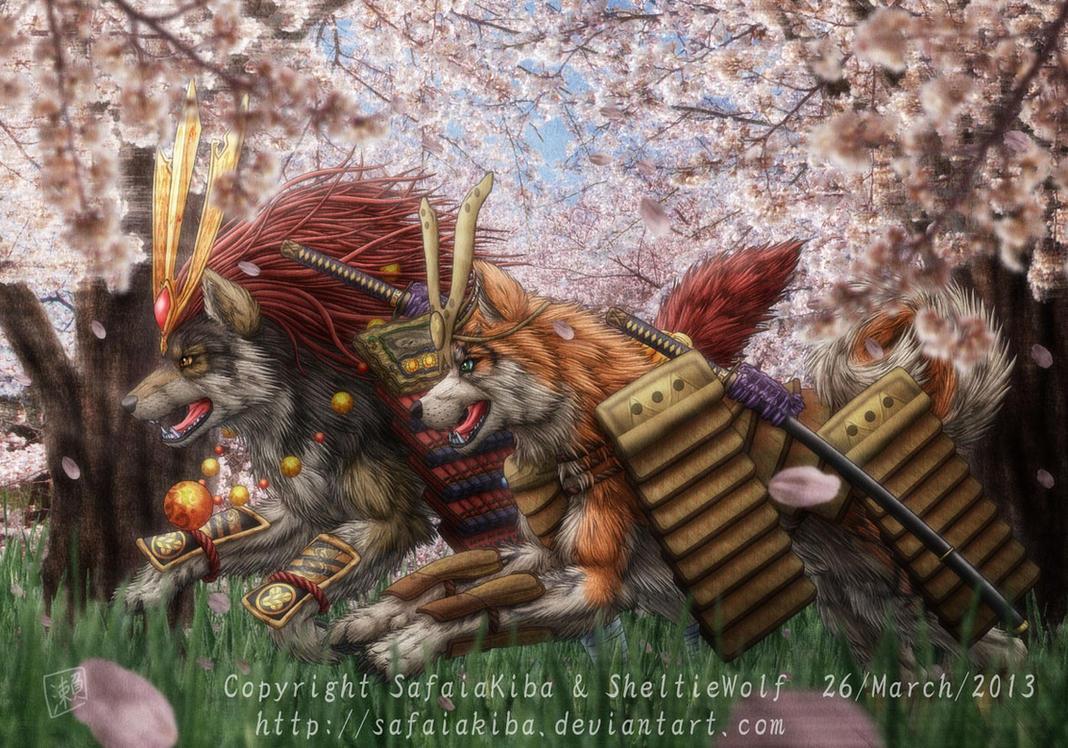 Akita, Wolf by SheltieWolf