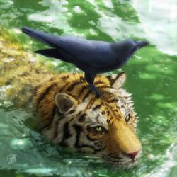 Swimming Tiger