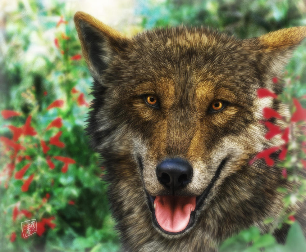 Smiling Wolf by SheltieWolf