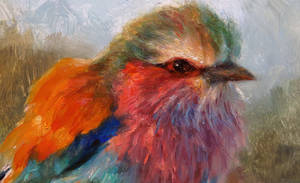 Lilac-breasted Roller (detail) by snellynell