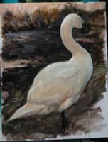 WIP Swan by snellynell