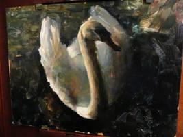 Swan by snellynell